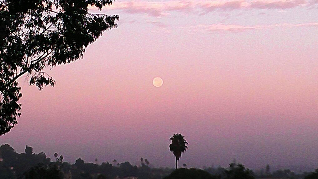 Full Moon in Morning Sky