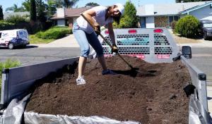 Shoveling Dirt